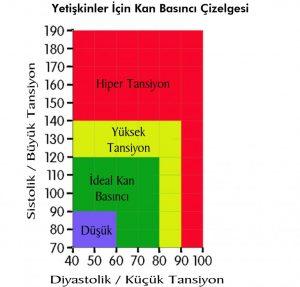Normal-ve-normal-olmayan-kan-bas%C4%B1nc